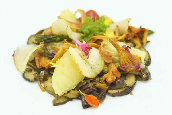Setas, hortalizas, raíces y tubérculos